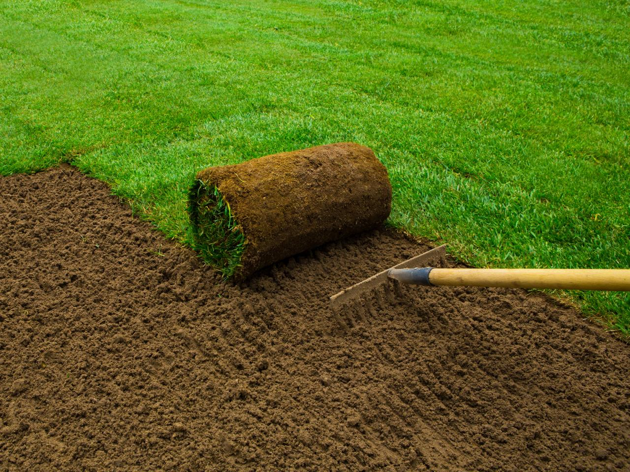 Non-leveling of your yard