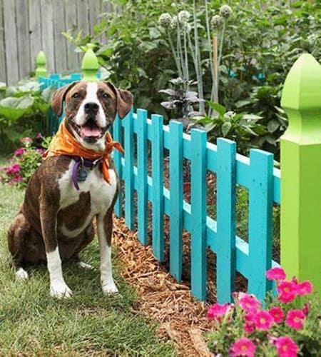 Pop-Up fence