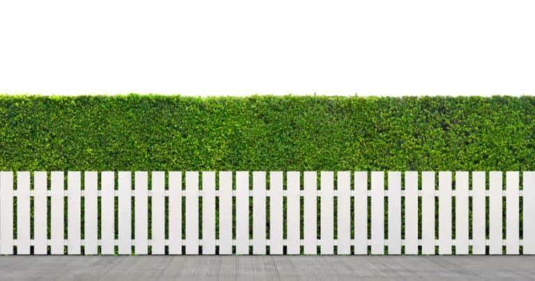 Symmetric Fence