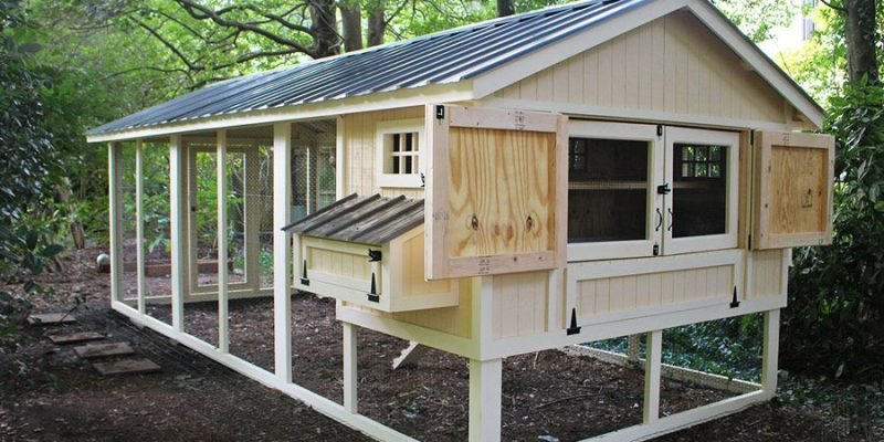 12 Chicken Coop Plans: Customize Your Hen House