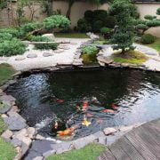 15 Backyard and Garden Pond Design and Ideas