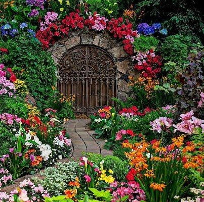 24 Best Flower Hedge Ideas: #17 is Our Favorite!