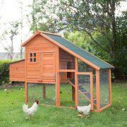 5+ Chicken Coop Door Ideas: Great Help to Get You Started