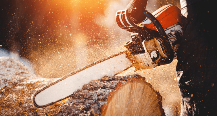 7 Easy Steps to Proper Chainsaw Maintenance
