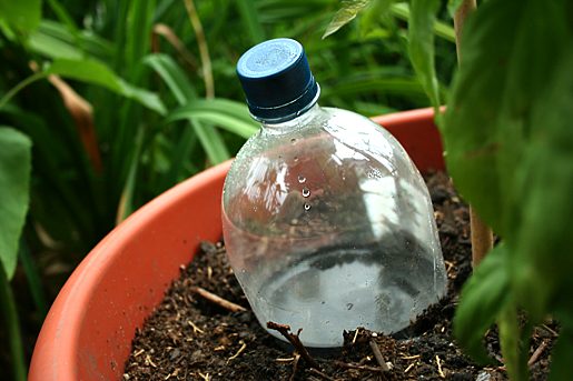 Add Water to The Container