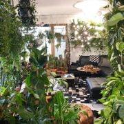 Adorable Indoor Garden Ideas You Should Apply