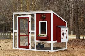 Chicken Run Plans: 10+ Ideas for Chicken Coop
