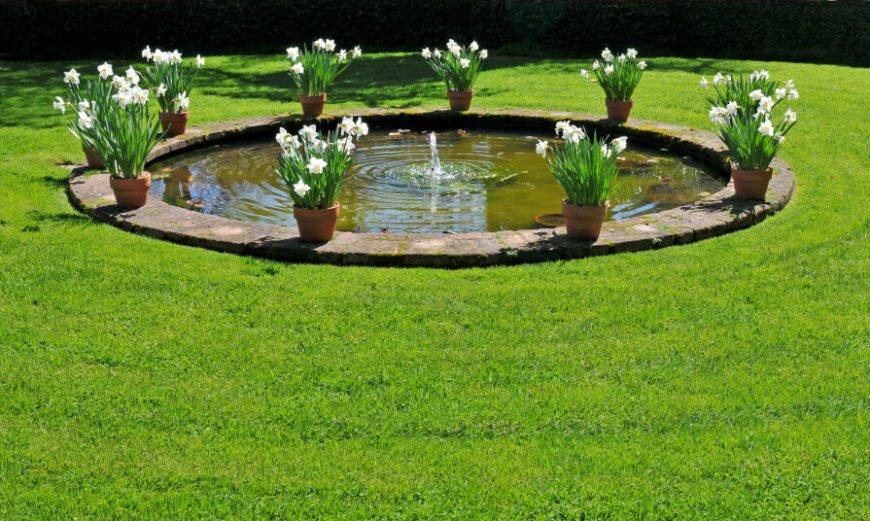 Circular Garden Pond Idea