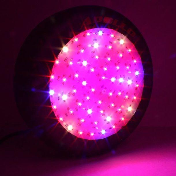 G8LED Grow Lights