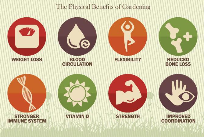 Gardening a Good Exercise