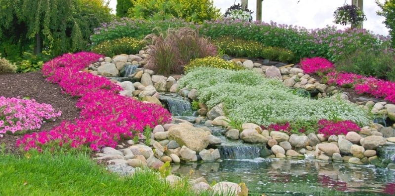 How to Build Rock Gardens [In-Depth Guide]