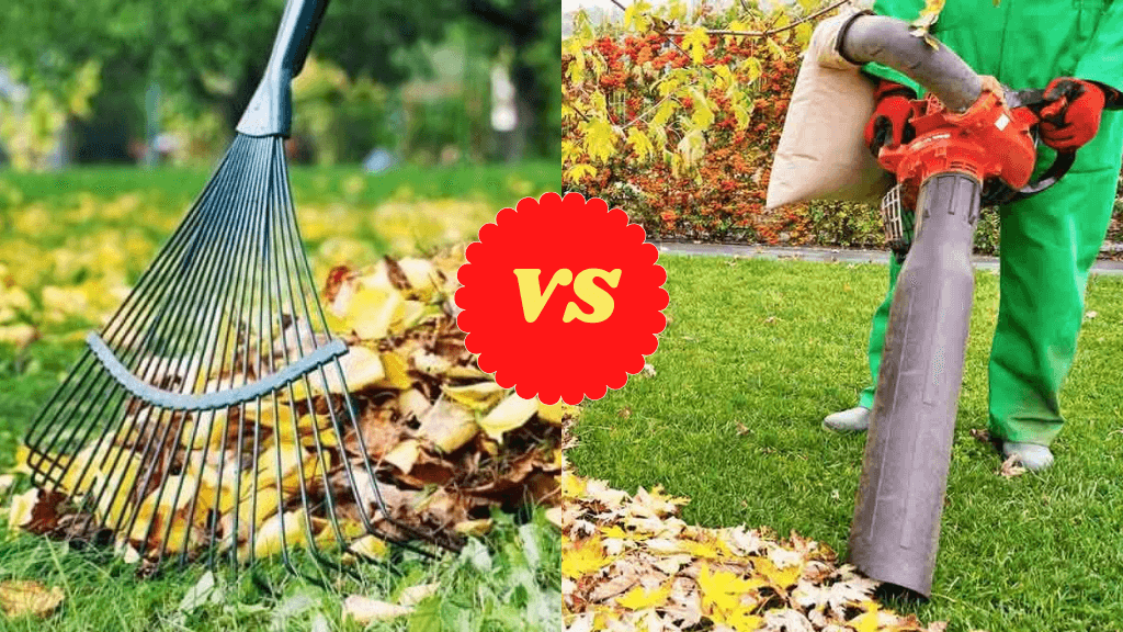 Leaf Blower vs Rake
