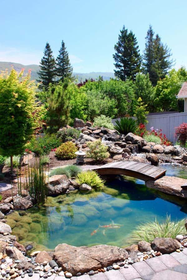 Natural Garden Pond Idea