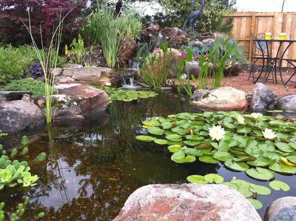 Right Depth Pond