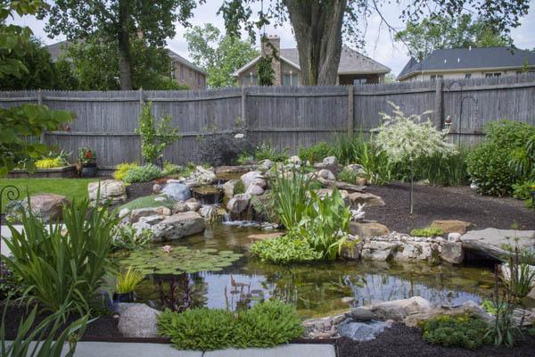 Shallow pond in open garden