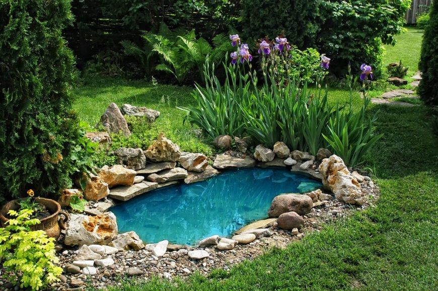 Simple Garden Pond