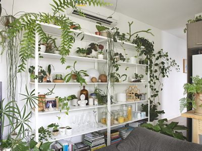 The Best Indoor Plant Stands & Shelves for Your Home in 2020