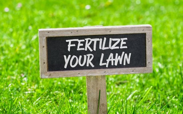 What Fertilizer Numbers to Use in Spring - Lawn Fertilizer Guide 2020