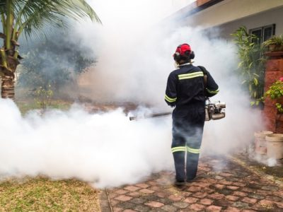 What Is A Mosquito Fogger, and Do They Work?