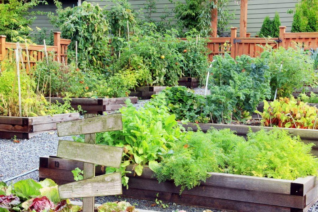 20 Backyard Garden Ideas - Small or Large