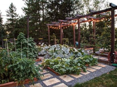 28 Fabulous Garden Box Ideas