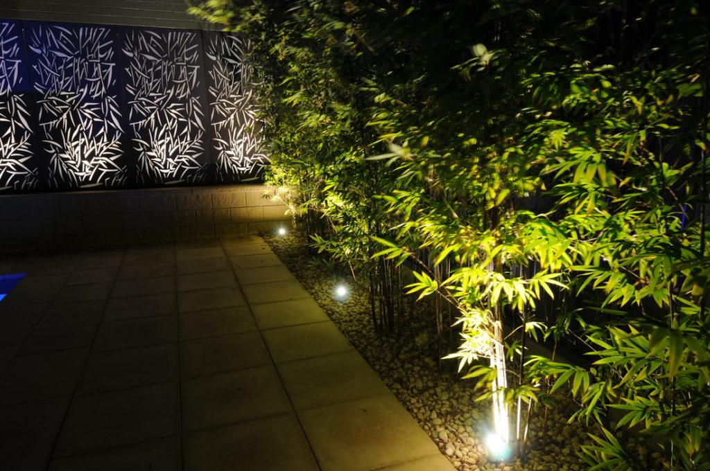 Light up the Trees