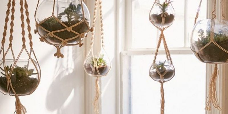Best Macramé Plant Hangers for Indoor Plants