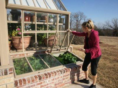 Cold Frame Vs. Greenhouse
