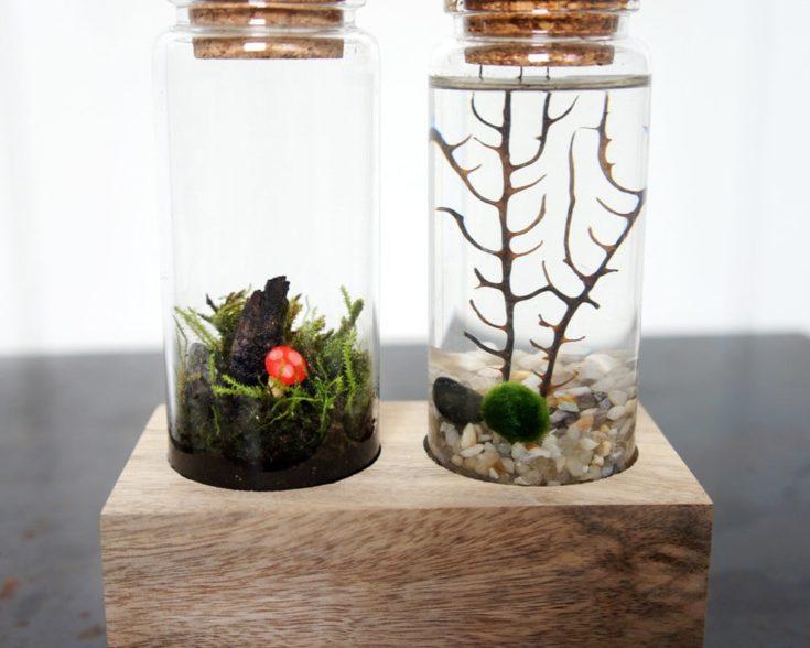 Cork jar Ideas