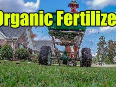 Dr. Earth Lawn Fertilizer Review 2020
