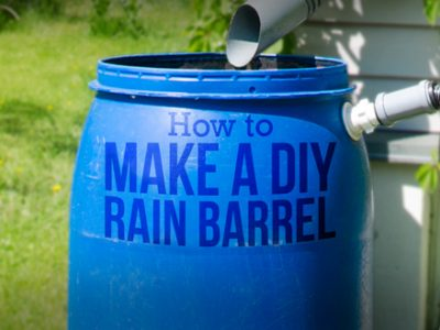 Easy DIY Rain Barrel at Home: A Step by Step Guide