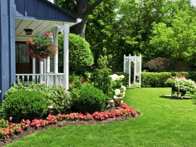 How Can I Make my Backyard Private, for Cheap?