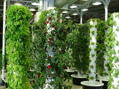 How to Make Your Own Garden Tower