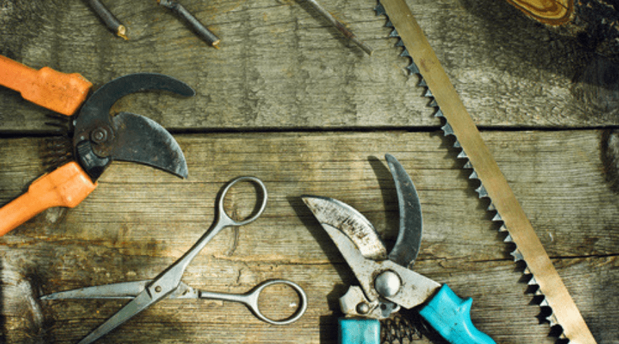 How to Sharpen Pruning Shears with the Help of a File