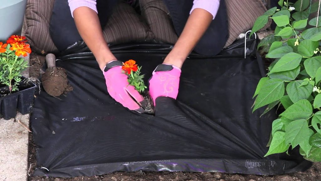How to Use Garden Fabric