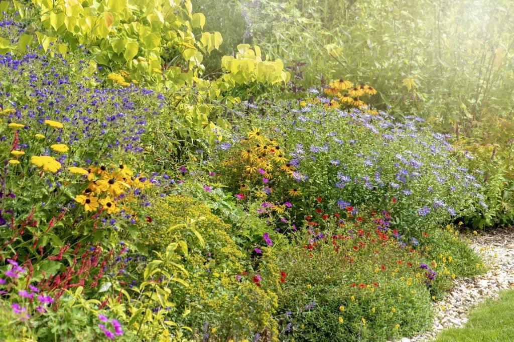 Natural Flora All-Around