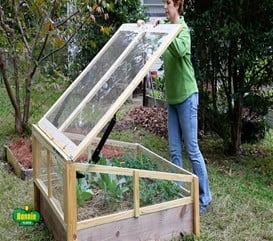 Raised Bed Cold Frame