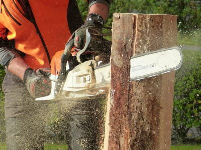 What Size Chainsaw Do I Need?
