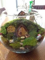 Witches' Garden Terrarium