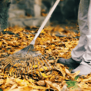 14 Top Leaf Raking Hacks Every Homeowner Should Know
