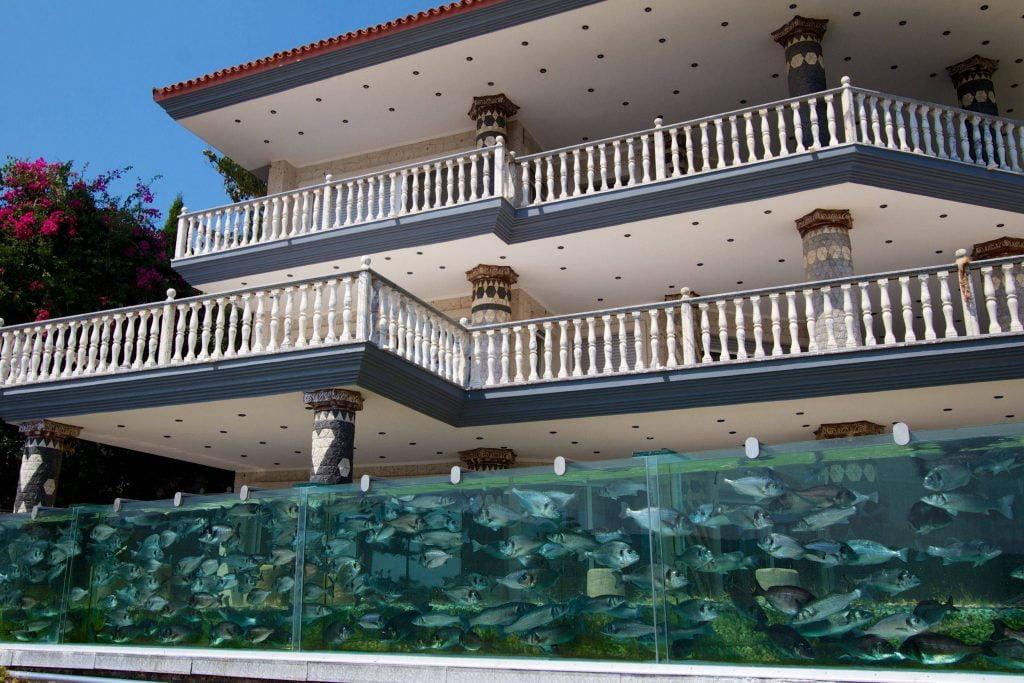 Aquarium in The Fence