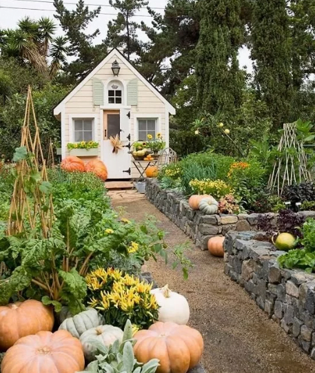 Charming Cottage Shed