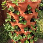 Composting Garden Tower vs. Aeroponic Tower Garden