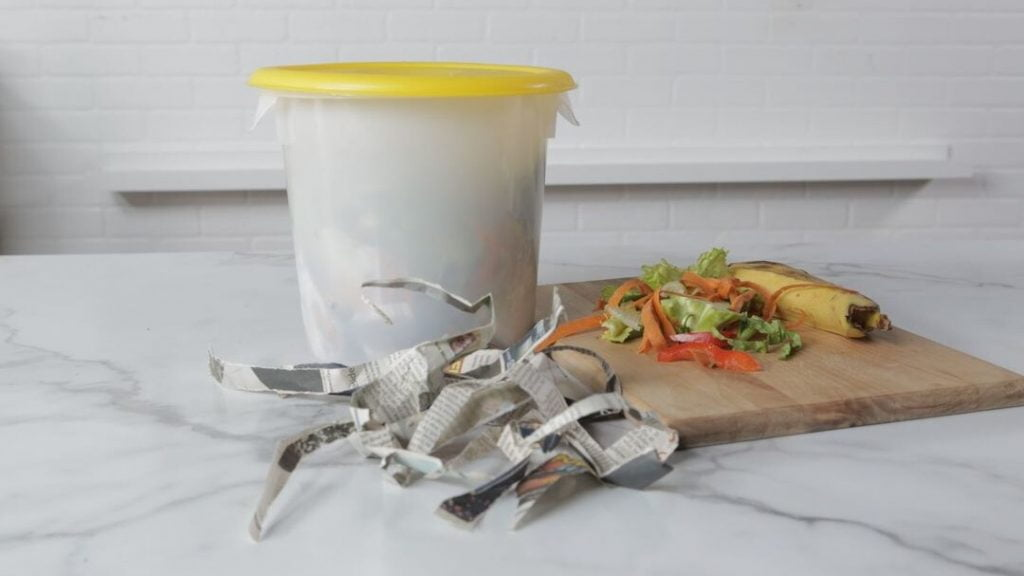 Container Made of Plastic Having a Lid