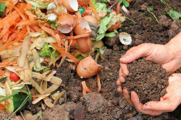 DIY Indoor Compost Bin – How to Build Your Own in 4 Easy Steps
