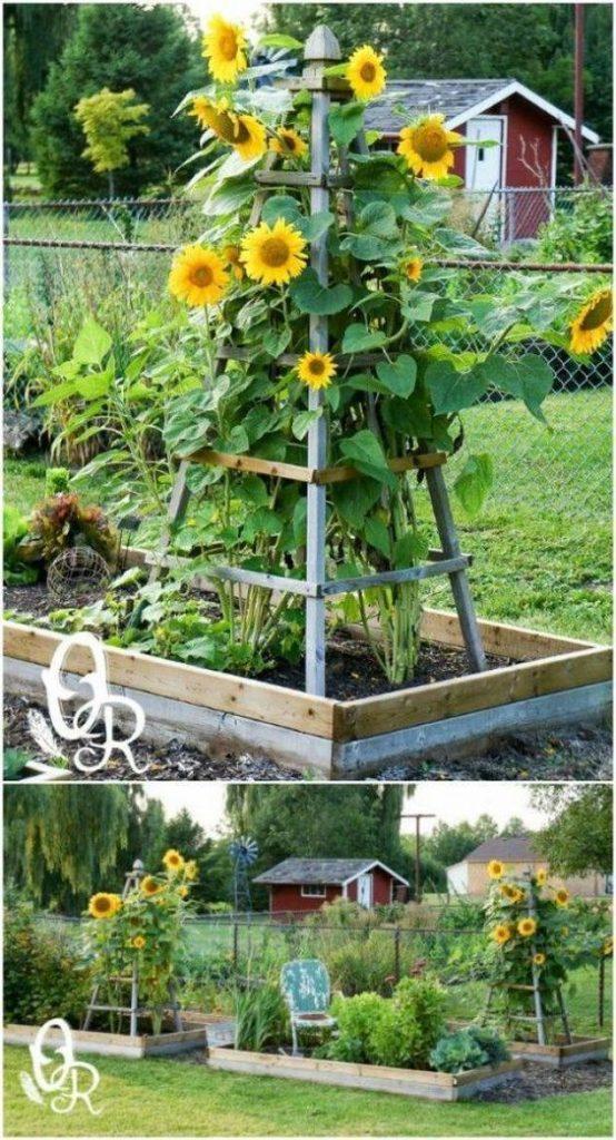 DIY Obelisk Garden Trellis