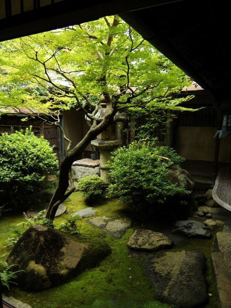 Enclosed Territory Japanese Garden