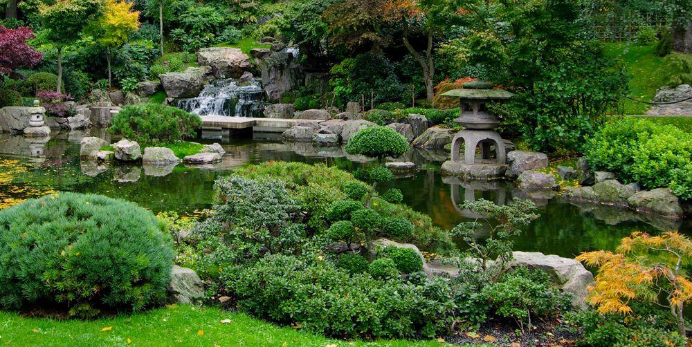 Full of Greenery Japanese Garden