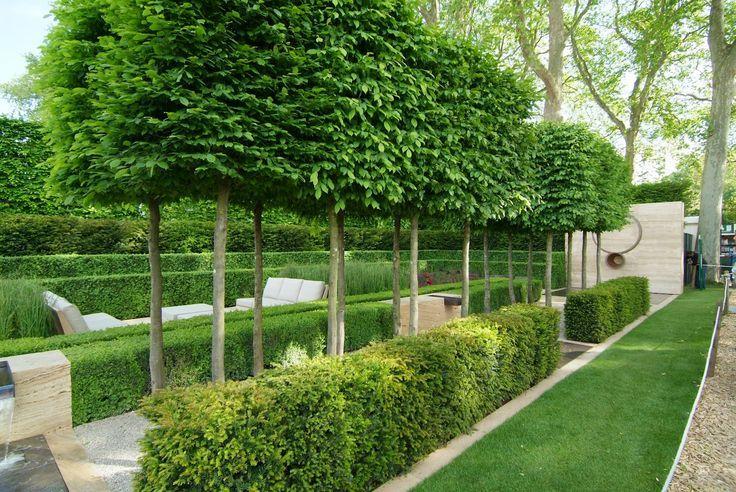 Groomed Hedges