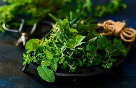 Herb Substitute